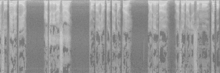 Cropped spectrogram with warped frequency axis